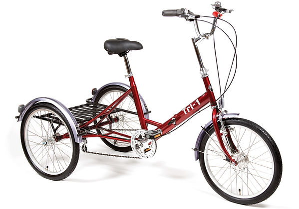Tri-1 Tricycle for Special Needs by Pashley