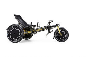 Hase Trix trike for special needs