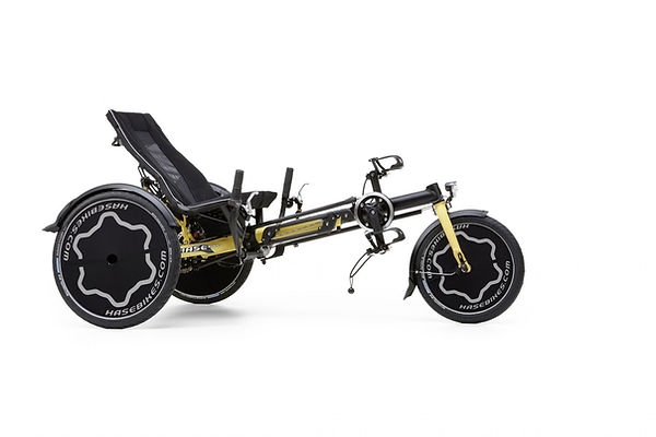 Trix childrens recumbent bicycle for special needs by hase
