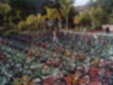 I built a lot of bikes.jpg