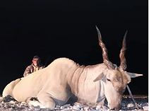 Africa Hunt 5.PNG
