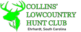 collinslowcountry (1).png