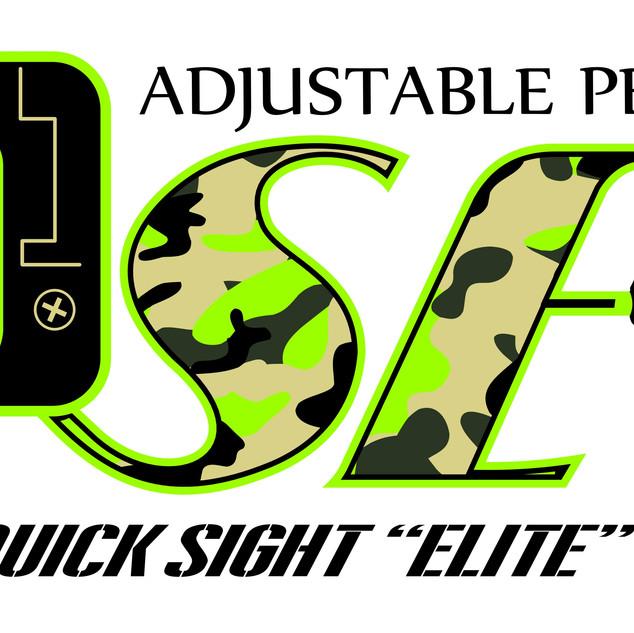 QSE Logo 2 on wht.JPG