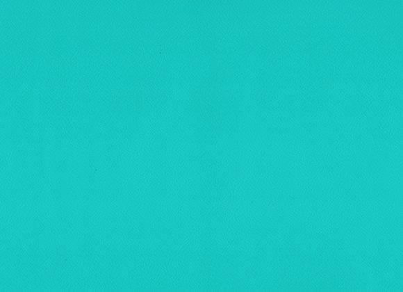 Enduro Turquoise
