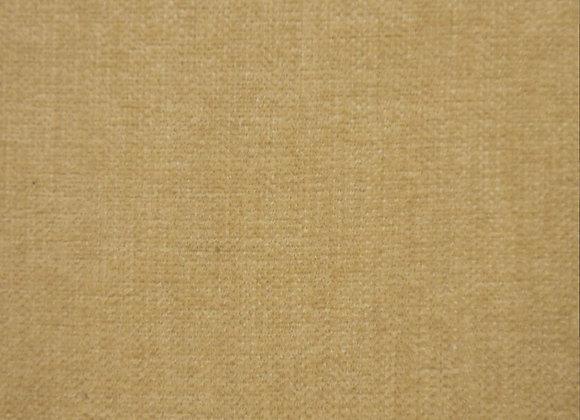 Ancona Wheat