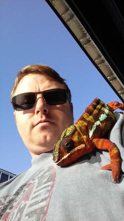 Chameleon Upholstery Owner