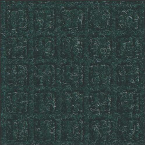 Classic Evergreen #159