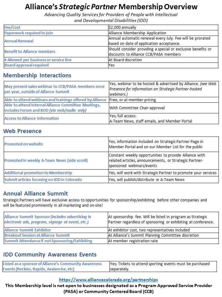 Alliance Strategic Partner Overview.png