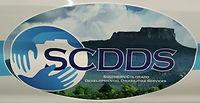 SCDDS Logo.jpg