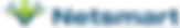 Netsmart - color - PNG (1) (002).png