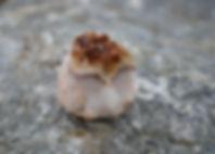close-up-crystal-geode-1573233.jpg
