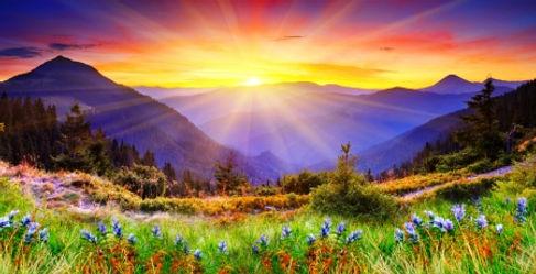 Spring Sunrise.jpg