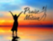 PIM logo.png