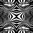 02 symetrip 2.jpg