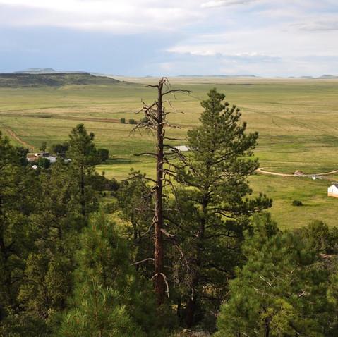 North Kelly Mesa
