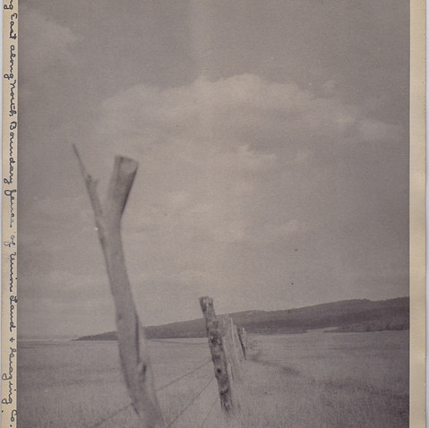 CURRIE PASTURE OLD FENCE POST