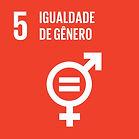 5-Igualdade-de-Gênero.-Vetorizada.-JPG.-