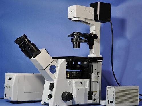IX71 도립형광현미경