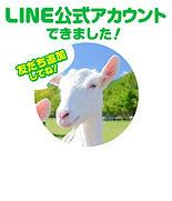 webバナー_LINEお知らせ.jpg