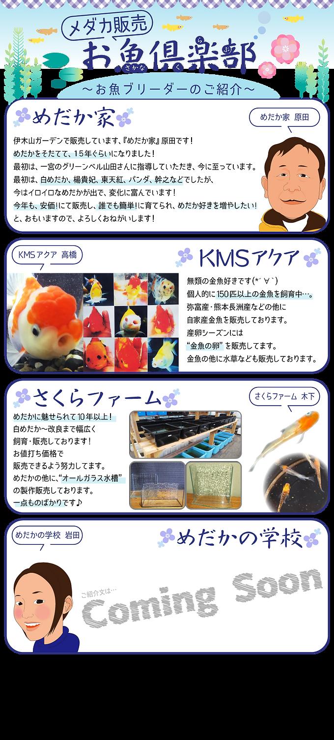 HPお魚倶楽部new.png