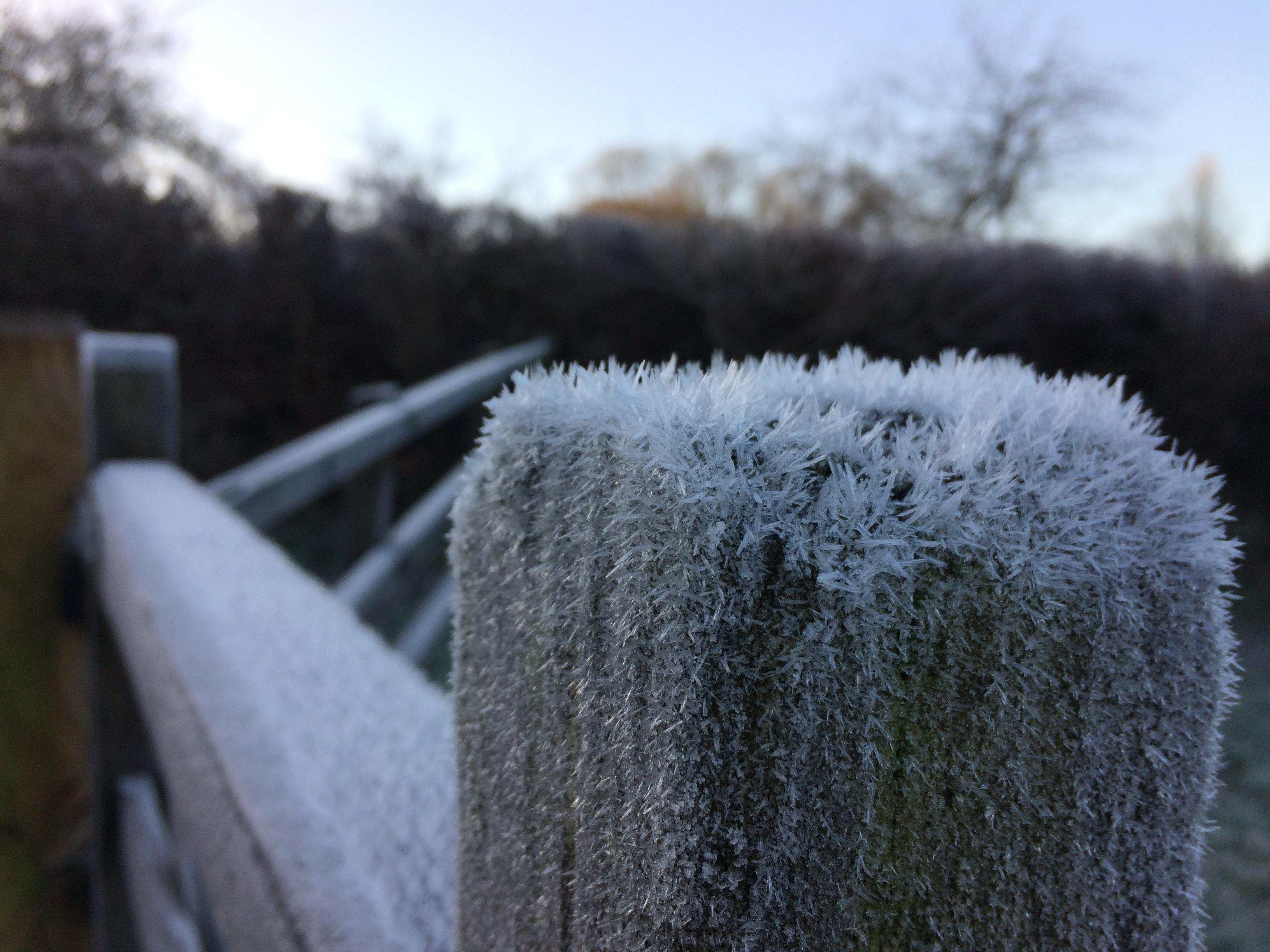 Frosty Gate