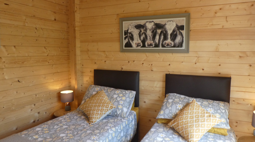Two single beds_