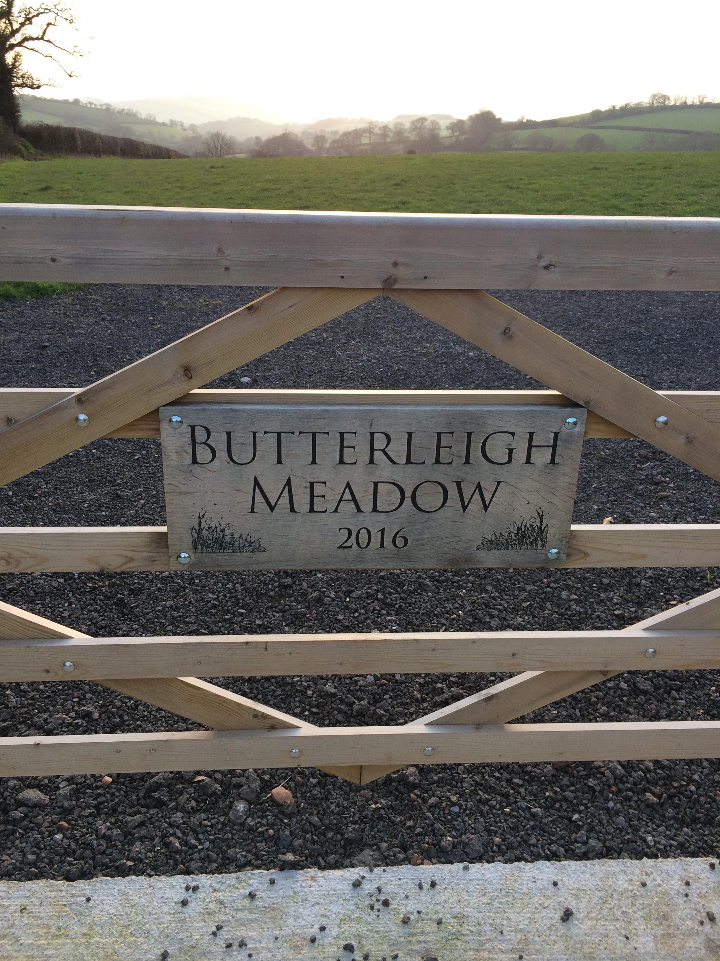 Butterleigh Meadow
