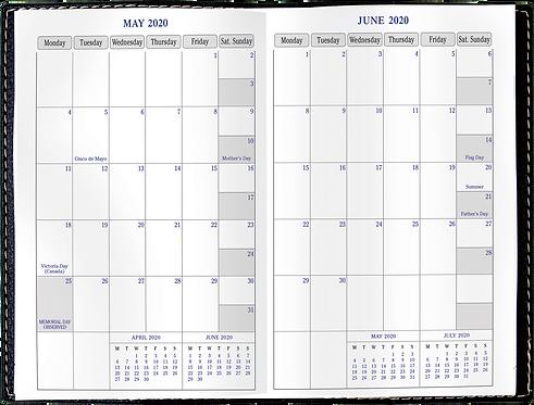 Quo Vadis Journal 21 2020 Planner - Texas Black