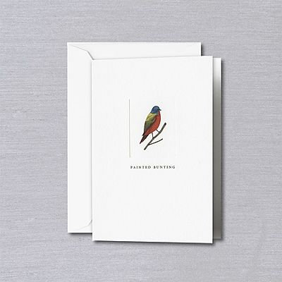 Crane Painted Bunting Notes with Envelopes