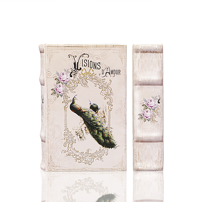 Visions d'Amour Book Box