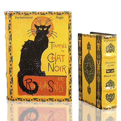 Cat Noir Book Box (2 Sizes)