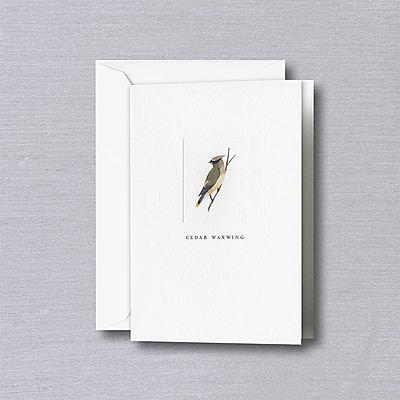 Crane Cedar Waxwing Notes with Envelopes