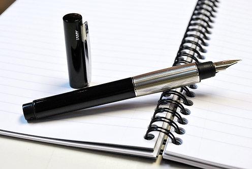 Lamy Accent Fountain Pen
