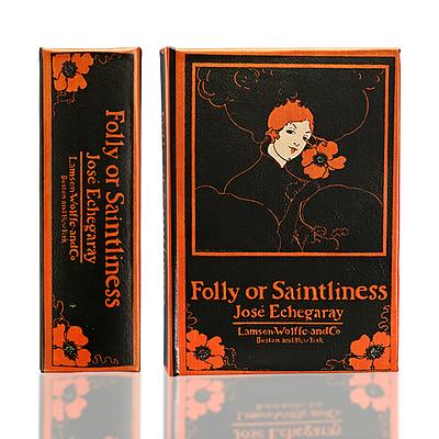 Folly or Saintliness Book Box