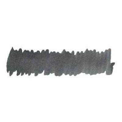 Diamine Silver Fox - Anniversary Ink
