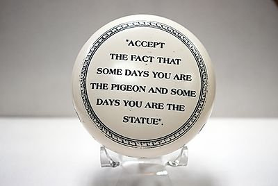 """Paperweight """"Accept the fact that some days you are the pigeon and some days..."""""""