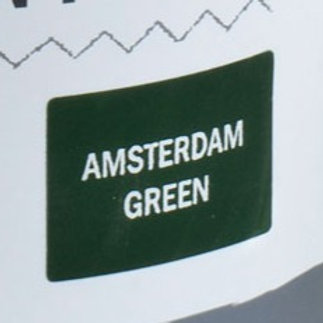 Sample Tin (120mL) of Amsterdam Green Chalk Paint® by Annie Sloan