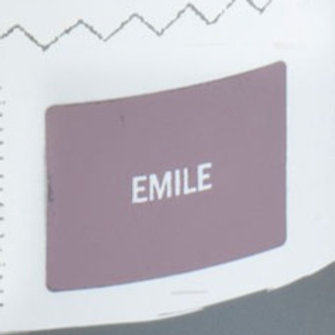 Sample Tin (120mL) of Emile Chalk Paint® by Annie Sloan