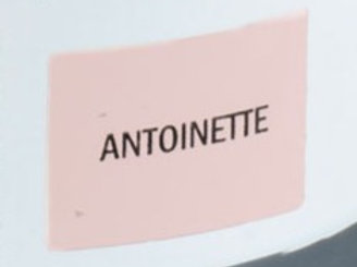 Sample Tin (120mL) of Antoinette Chalk Paint® by Annie Sloan