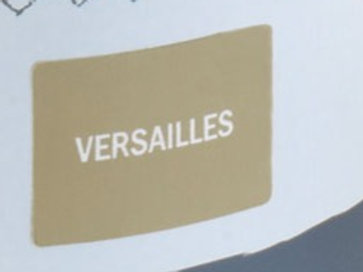 Sample Tin (120mL) of Versailles Chalk Paint® by Annie Sloan