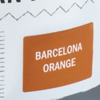 Sample Tin (120 mL) of Barcelona Orange Chalk Paint® by Annie Sloan