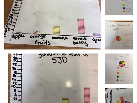 Collecting, presenting and analysing data