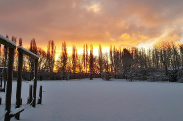 Snow 4a.jpg