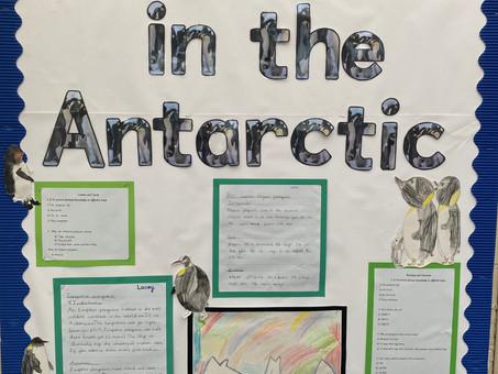 Adventures in the Antarctic - Year 2