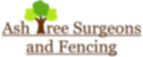 Tree surgeon Hastings Tree surgeon Bexhill Tree surgeon Eastbourne Tree surgeon Eastboure Tree surgeon East Sussex Fencing Hastings Fencing Bexhill Fencing Easbourne Fencing Rye Fencing East Sussex Fencing