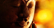 What Did The Buddha Say About...