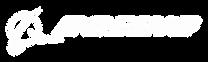 boeing logo white.png