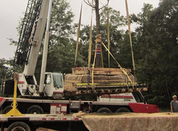 Day in Life of Large Tree Mover - 10