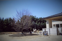 Zuks Tree Moving Private Residence 4