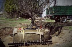 Zuks Tree Moving Private Residence 8